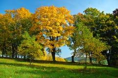 Gasse im Herbst Stockfotos