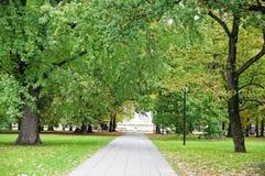 Gasse im Herbstpark Stockbilder