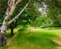 Gasse im Park Lizenzfreies Stockbild