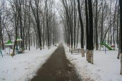 Gasse im Park in der Mitte von Belgorod stockfotografie