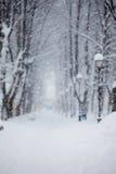 Gasse im Park, Schnee bedeckte Bäume, sehr unscharfes Bild, Themahintergrund Stockbilder