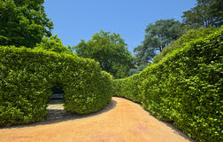 Gasse im Serralves-Park von Porto Stockfotos