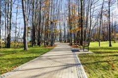 Gasse läuft durch den Stadtpark in Zakopane Stockfotografie