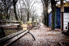 Gasse mit Bänke in dendro Park in Kropyvnytskyi, Ukraine Lizenzfreie Stockfotografie