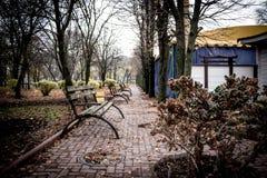 Gasse mit Bänke in dendro Park in Kropyvnytskyi, Ukraine Lizenzfreies Stockfoto