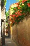 Gasse mit Blumen in Venedig Stockfotos