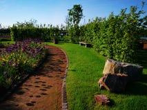 Gasse mit purpurroten Blumen und Steinen stockfotos