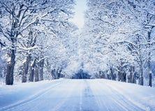Gasse am schneebedeckten Morgen stockbild