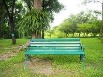 Gasse und Bank des Gartens Schöner Frühlingspark Grüner Park Stockfotos