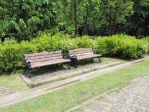 Gasse und Bank des Gartens Schöner Frühlingspark Grüner Park Stockbild