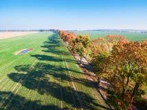 Gasse von Herbstbäumen unter grünen Feldern in der Landschaft stockbild
