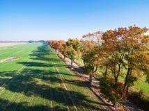 Gasse von Herbstbäumen unter grünen Feldern in der Landschaft stockbilder