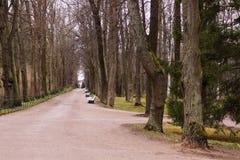 Gassenherbstpark Lizenzfreie Stockfotografie