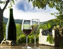 Gasses of wine Royalty Free Stock Photography