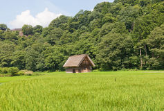 Gassho style barn in Ogimachi village, Japan Royalty Free Stock Photo
