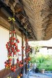 Gassho Zukuri (Gassho-style) House in Gokayama Royalty Free Stock Photos