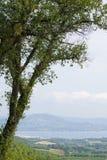 Gassin Προβηγκία Γαλλία Στοκ Εικόνες
