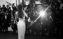 Gast nimmt an Premiere teil lizenzfreie stockfotografie