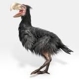Gastornis (pássaro do terror) ilustração do vetor