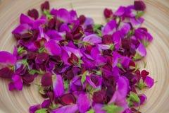 Gastrónomo de los guisantes de olor que cocina los ingredientes Imagen de archivo