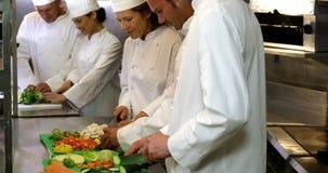 Gastrónomos del cocinero que preparan una ensalada almacen de metraje de vídeo