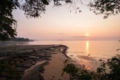 Gastrópode Shell Beach fóssil, 75 milhões do cemitério velho do shell dos anos Fotografia de Stock