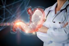 Gastroenterólogo y estómago Fotos de archivo libres de regalías