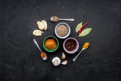 Gastronomi som är kulinarisk Hemligheter av smaklig disk Krydda och kryddor på svart utrymme för kopia för bästa sikt för bakgrun Royaltyfri Bild