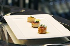 Gastronomic and gourmet. Gastronomy and gourmet at your table with focus and without Stock Image