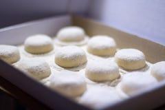 Homemade italian pasta stock photography