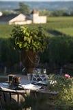 Gastronomie-Restaurant - Luxus - Terrasse im Sommer - Weinberg lizenzfreie stockbilder
