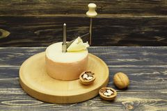 gastronomisch Oude, smakelijke, geurige kaas, kaassnijder en okkernoten op donkere houten achtergrond stock foto's