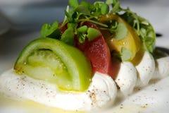 Gastronomisch tomaat en kaasvoorgerecht royalty-vrije stock foto