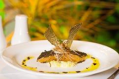 Gastronomisch Zalmdiner Royalty-vrije Stock Foto