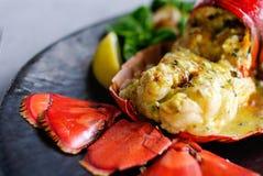Gastronomisch zeekreeftdiner bij het restaurant stock afbeelding
