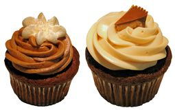 Gastronomische cupcakes Royalty-vrije Stock Afbeeldingen