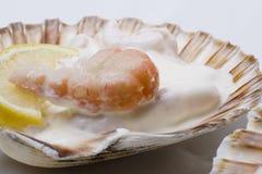 Gastronomische grote garnalensalade Stock Foto