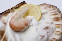 Gastronomische grote garnalensalade Royalty-vrije Stock Fotografie