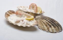 Gastronomische grote garnalensalade Stock Fotografie