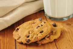 Gastronomische koekjes Royalty-vrije Stock Afbeelding
