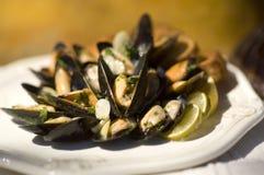 Gastronomische mosselen Royalty-vrije Stock Foto's