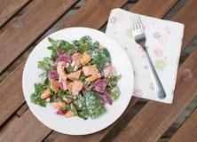 Gastronomische salade Royalty-vrije Stock Fotografie