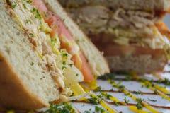 Gastronomische sandwich Stock Afbeeldingen