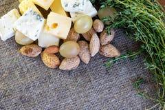 Gastronomische snacks: kazen, druiven en noten royalty-vrije stock afbeelding