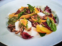 gastronomy Imagens de Stock