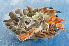 Gastronomy food - seafood platter Royalty Free Stock Photo