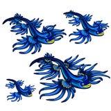 Gastropod mollusk Glaucus atlanticus Błękitny smok odizolowywający na białym tle Wektorowa kreskówki zakończenia ilustracja ilustracja wektor