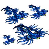Gastropod mollusk Glaucus atlanticus, the Blue dragon isolated on white background. Vector cartoon close-up illustration vector illustration
