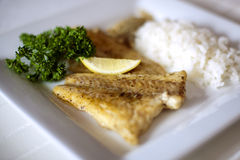 Gaststätte-Nahrung lizenzfreies stockbild
