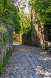 Gata av Oppede-le-Vieux Royaltyfria Bilder